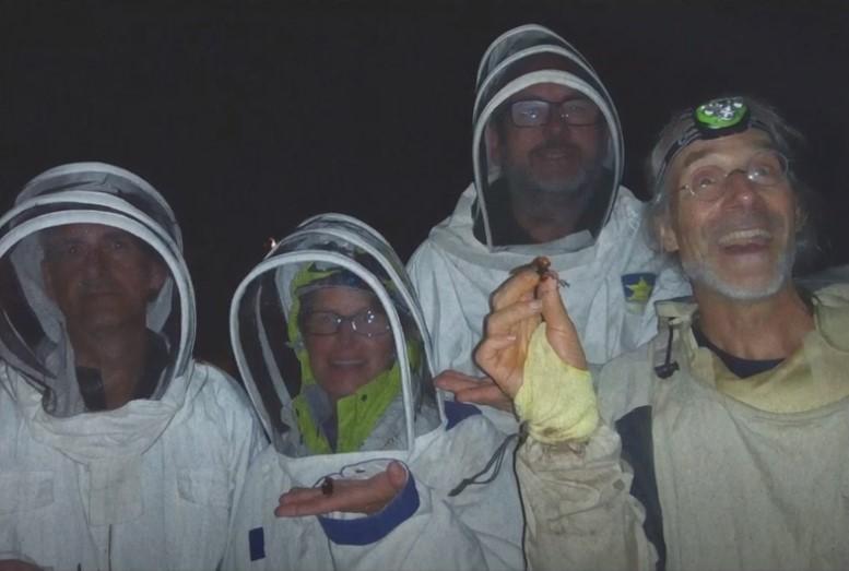 Farm Crime – Invasion of the Murder Hornets